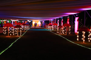 Sangeet event decoration at Dream Valley Resorts
