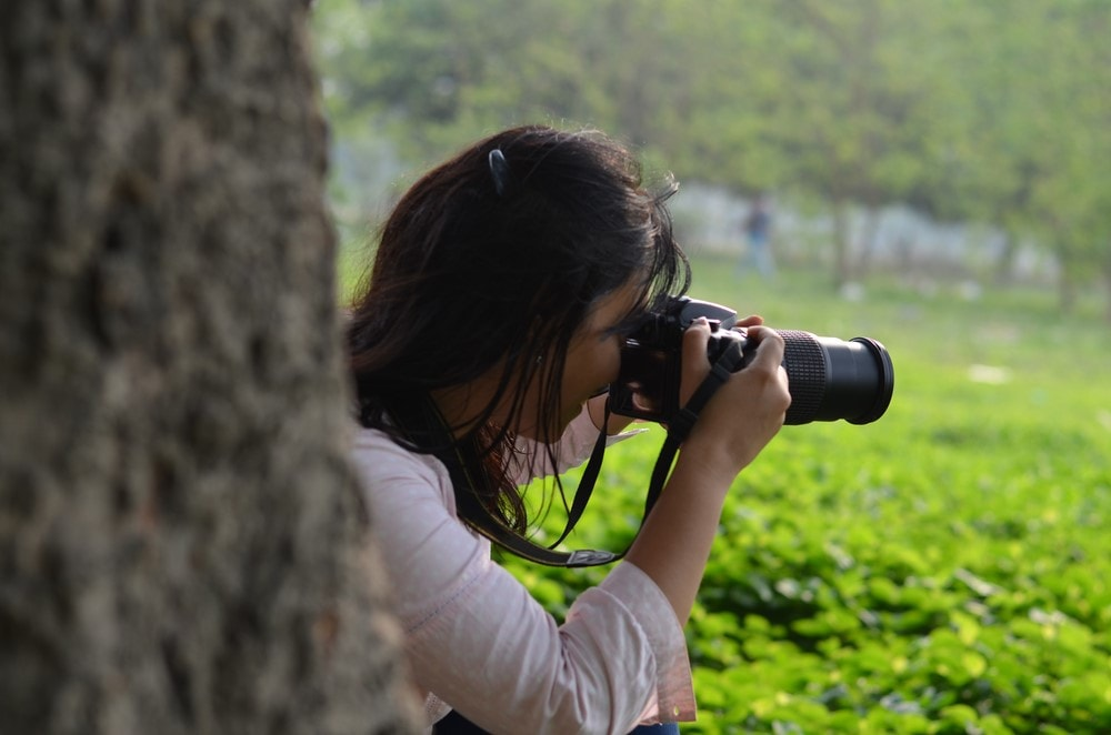 The region's lush green forests are ideal for photographers!