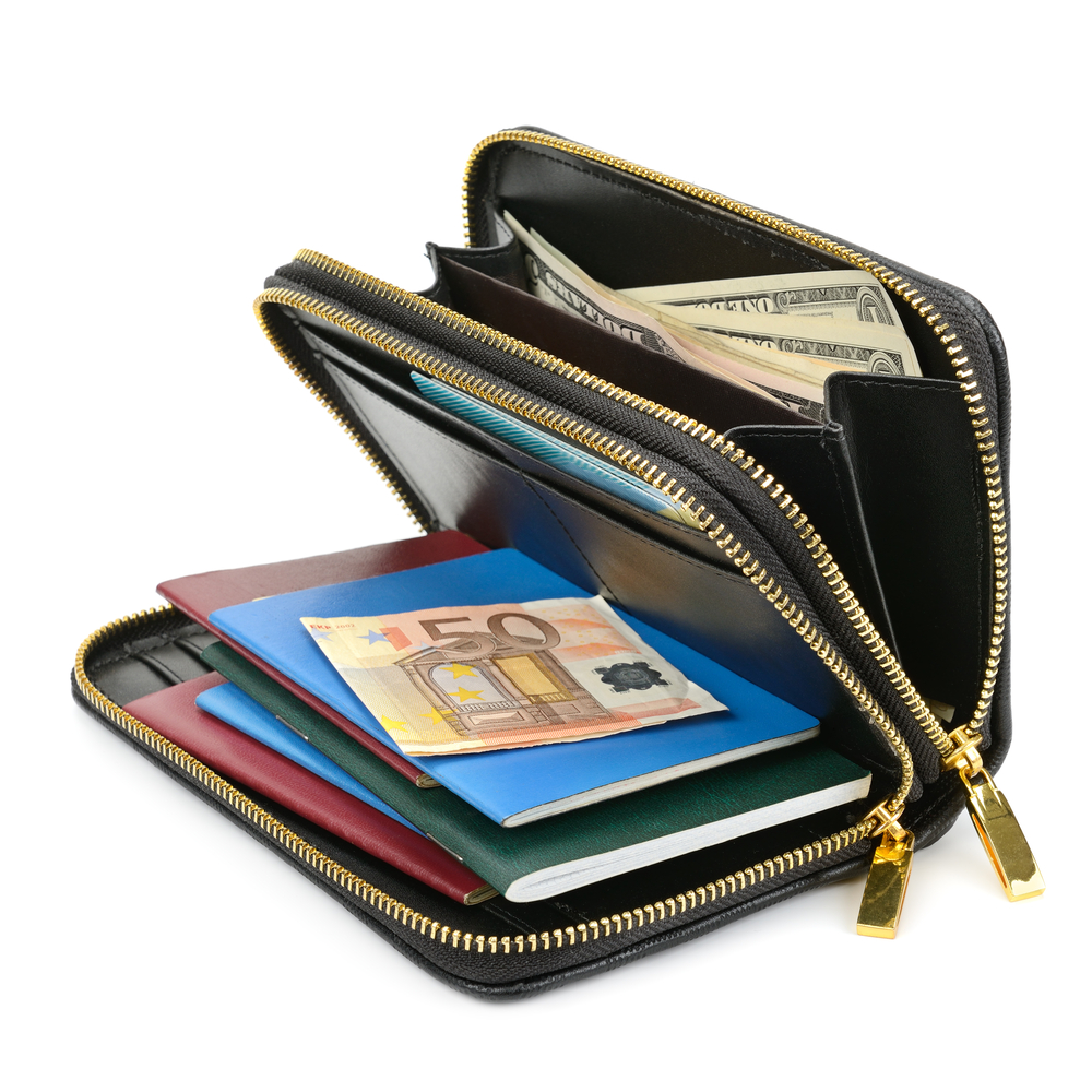 travel wallet requirements